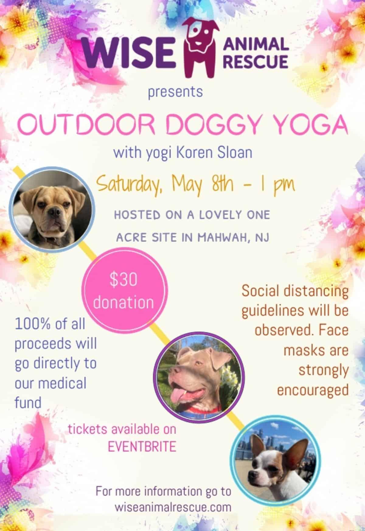 Outdoor Doggie Yoga WISE Fundraiser
