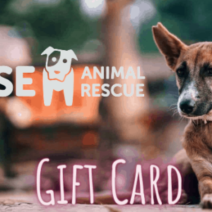 Wise Animal Rescue Gift Card